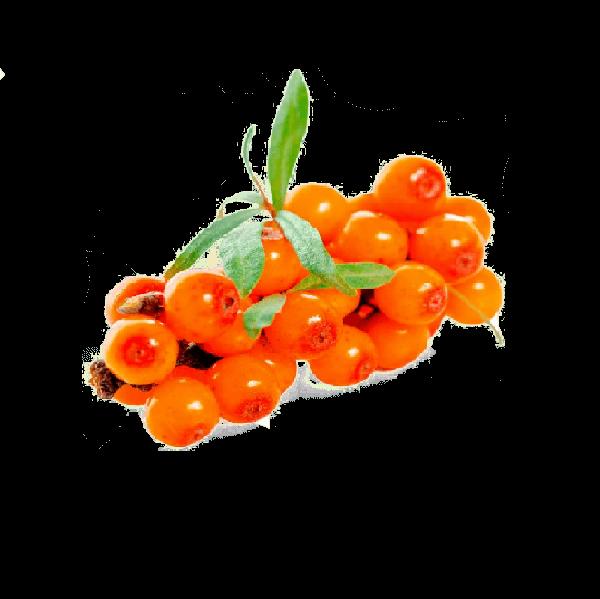 Aceite de espino amarillo virgen ecológico de Insolit Beauty