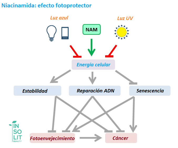 Niacinamida y sol