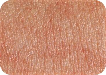 Ingredientes no comedogenicos para piel normal