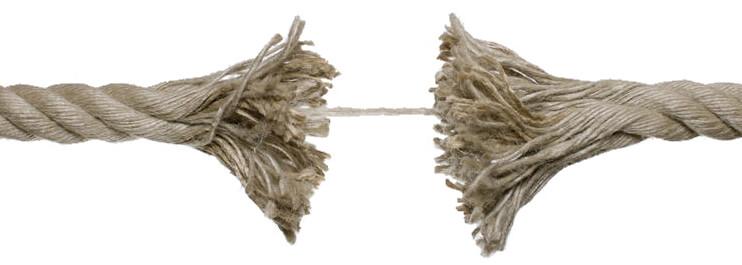 La causa de las estrias es la rotura de las fibras de colageno