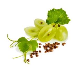 Aceite de pepita de uva virgen bio