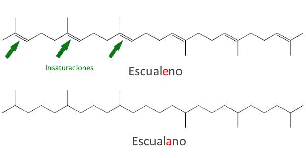 Escualano vs Escualeno vegetal