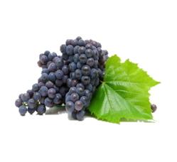 Extracto de viña roja bio