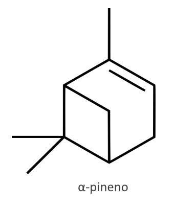 Pineno aceite esencial de jara
